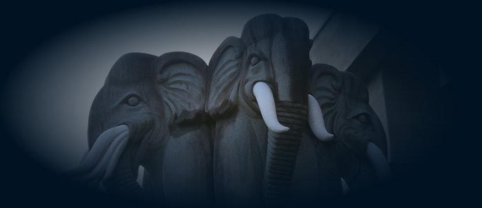 満徳寺の像